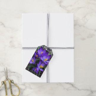 Purple Crocus Gift Tags