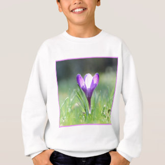 Purple Crocus in spring 03.3 Sweatshirt
