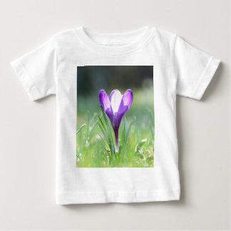 Purple Crocus in spring Baby T-Shirt
