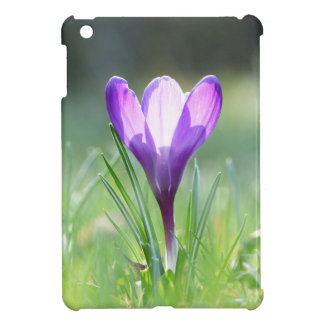 Purple Crocus in spring iPad Mini Cover