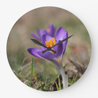 Purple crocus large clock