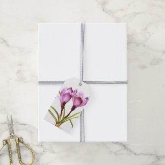 Purple crocus spring flower watercolor gift tag