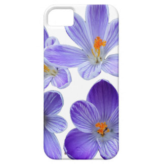 Purple crocuses 02 iPhone 5 covers