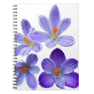 Purple crocuses 02 notebook