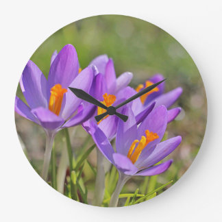Purple crocuses large clock