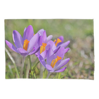 Purple crocuses pillowcase