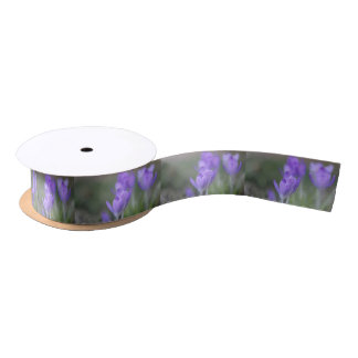 Purple crocuses satin ribbon