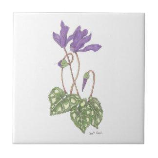 Purple Cyclamen Tile