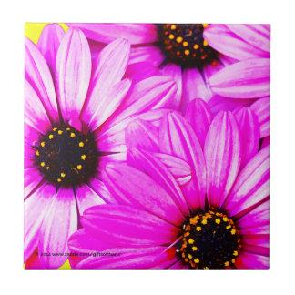 Purple Daisies - Ceramic Tile