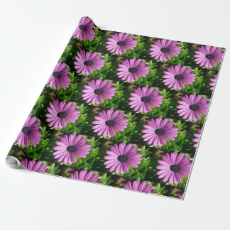 Purple Daisies Floral Gift Wrap