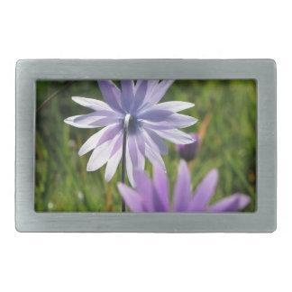 Purple daisy flowers on green background belt buckle
