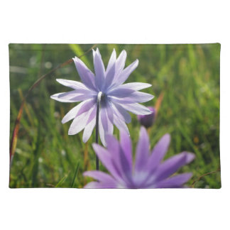 Purple daisy flowers on green background placemat