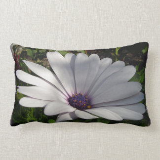 Purple Daisy Lumbar Pillow