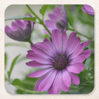 Purple Daisy Party Square Paper Coaster