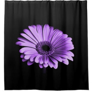 Purple Daisy Shower Curtain