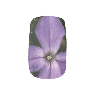 Purple Dame's Rocket wildflower women's nail art