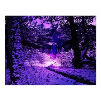 Purple Dark and Dire Postcard