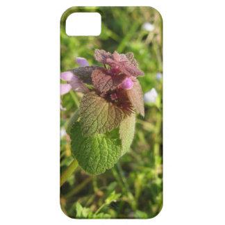 Purple Dead-nettle ( Lamium purpureum ) on green iPhone 5 Cover