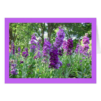 Purple Delphinium Card