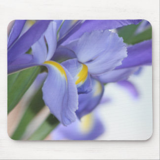 Purple Dream mousepad