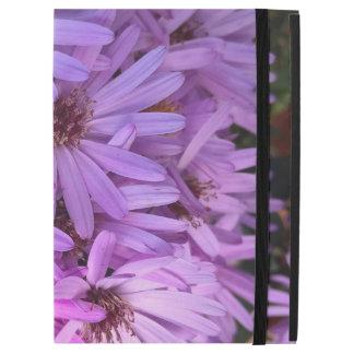 Purple Fall Flowers