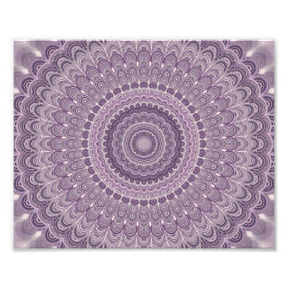 Purple feather mandala photo