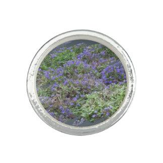 Purple Fields of Joy Silver Ring