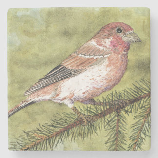 Purple Finch Coaster