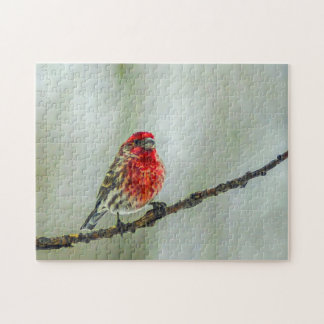 Purple Finch on a Tree Branch in Winter Red Bird Jigsaw Puzzle
