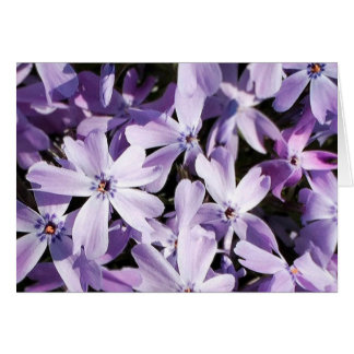 Purple Floral All Occasion Thank You Notes