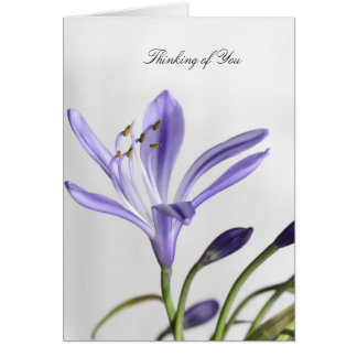 Purple Floral Blank Note Card