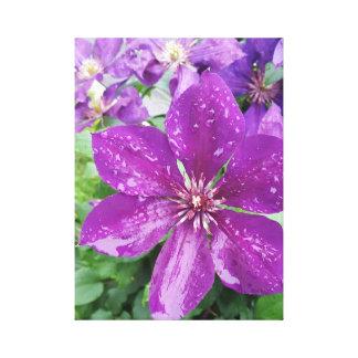 Purple flower after rain canvas print