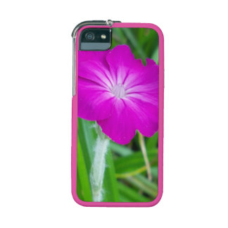 Purple Flower iPhone 5 Cases