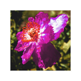 Purple Flower Lavender Somewhere Near Mars Canvas Print