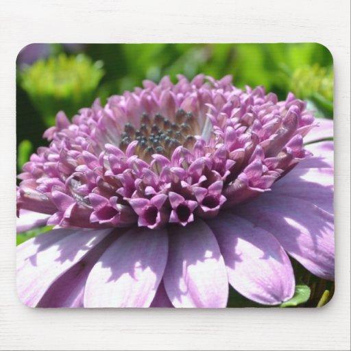 Purple Flower Mousepads