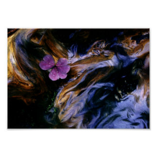 Purple Flower on Redwood Burl Poster