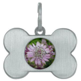 Purple Flower Pet ID Tag