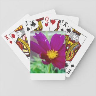 Purple Flower Playing Cards