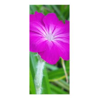 Purple Flower Custom Rack Card