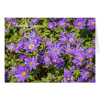 Purple Flower Thank You Cards (Blank)