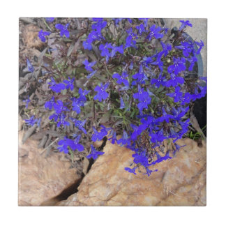 Purple Flowers among the Rocks Tile