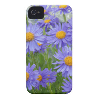 Purple Flowers Case-Mate iPhone 4 Cases