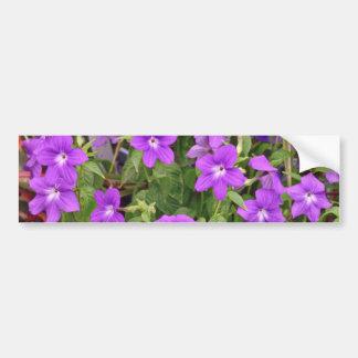 Purple Flowers flowers Bumper Sticker