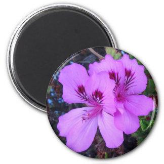 Purple Flowers Kitchen Magnet