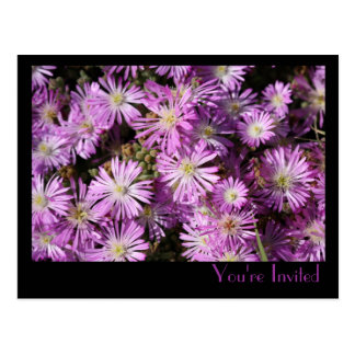 Purple Flowers Postcard