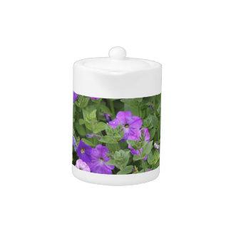 Purple Flowers Spring Garden Theme Petunia Floral