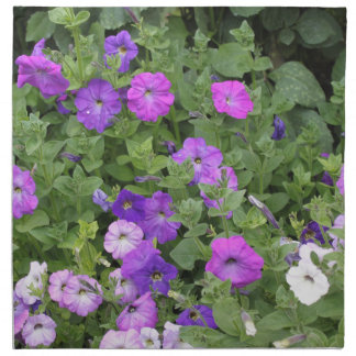 Purple Flowers Spring Garden Theme Petunia Floral Napkin