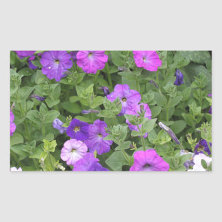 Purple Flowers Spring Garden Theme Petunia Floral Sticker