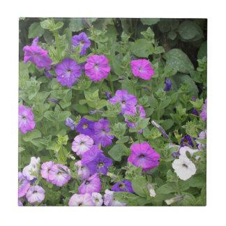 Purple Flowers Spring Garden Theme Petunia Floral Tile