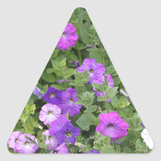 Purple Flowers Spring Garden Theme Petunia Floral Triangle Sticker